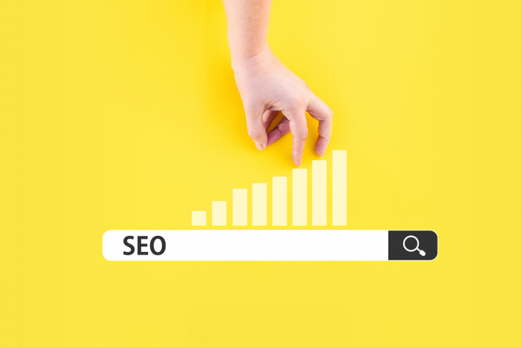 SEO, Triffid Marketing, Best SEO Services In Ahmedabad
